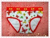 Lovely and hot selling girls cotton underwear/Girls&#39