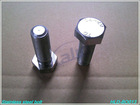 stainless steel hex nut and bolt