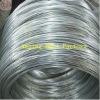 16 Gauge Galvanized Steel Wire For Binding Wire (factory)