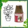 flower peat pot