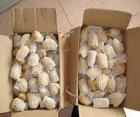 chinese fresh natural potato