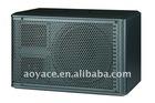 professional karaoke speaker DL-210