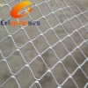 Hebei Celmetal Supply Beautiful Galvanized Grid Wire Mesh ( Free Sample, 10 Years Warranty)