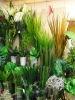 silk plant arrangement