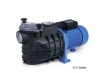 FCP Series Swimming Pool Pump