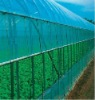 PE Plastic Greenhouse Film
