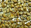 Roasted good for health and sight semen cassia