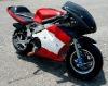 49CC pocket bike LWPB-608W
