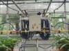 Greenhouse Movable sprinkler system