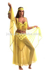 Belly dance costume tops veil scarf wear pants