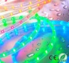 3528/30 LED Strip Light waterproof SMD RGB LED STRIP LIGHT