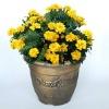 Classical design plastic flowerpot