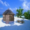 Bamboo Yurt