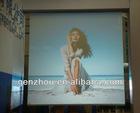 (Five colors, size: 1.524*30m)transparent projection film
