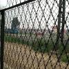 Welded Razor Mesh Fence for protective ( Manufacturer)