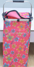 2012 Brand New Foldable Picinic Basket/Picnic Bags