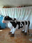 2012 Four legs dairy cow mascot costume