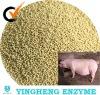 Pig feed additives