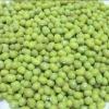 green mung bean, up3.6mm, mung bean for food,green bean