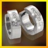 stainless steel earring fashion jewelry, paypal acceptable