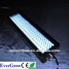 100 watt led aquarium lighting