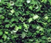 new harvest crop quality dehydrated vegetable/ dehydrated chive