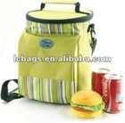 ice pack bottle cooler bag picnic pack