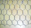 Zinc coating >30g/m2 Hot dipped chicken coop galvanized wire mesh