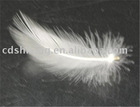 Duck Feather, 2-6CM, Feather Pillows