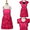 2010 Fashion flower girl's dress f-4