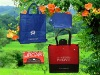 high quality and popular non woven folding bag