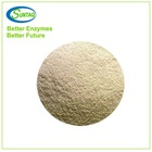 Powder Phytase Enzyme for Animal Feed Industry