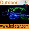 Outdoor IP65 Flexible LED Strip light for Decoration