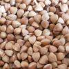 hulled roasted buckwheat kernels