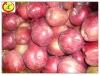 Fresh red apple fruit