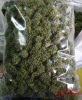 sanqi flower tea, herbal tea, herb tea, Chinese herb tea