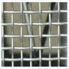Galvanized square wire mesh (professional manufacturer)