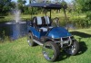 3000W 2 seater Electric Golf Cart