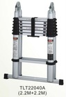 TELESCOPIC LADDER TLT-03