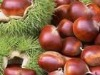fresh chestnut(from china)