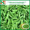Wholesale FROZEN Green Edamame Beans Price