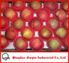JQ Fresh Red Fuji Apples Wholesale