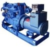 diesel generator set/TW