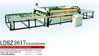 Automatic Screen Printing Machine/LDSZ2617