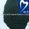 100% Pure Spirulina Powder with Protein