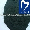 100% Pure Spirulina Powder with Protein