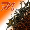 Fujian New Craft White Tea