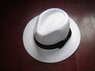 CSH-T001 PP Braids Hat