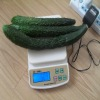 Portable electronic digital scales