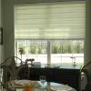 zebra blind roller blind sheer shade window curtain